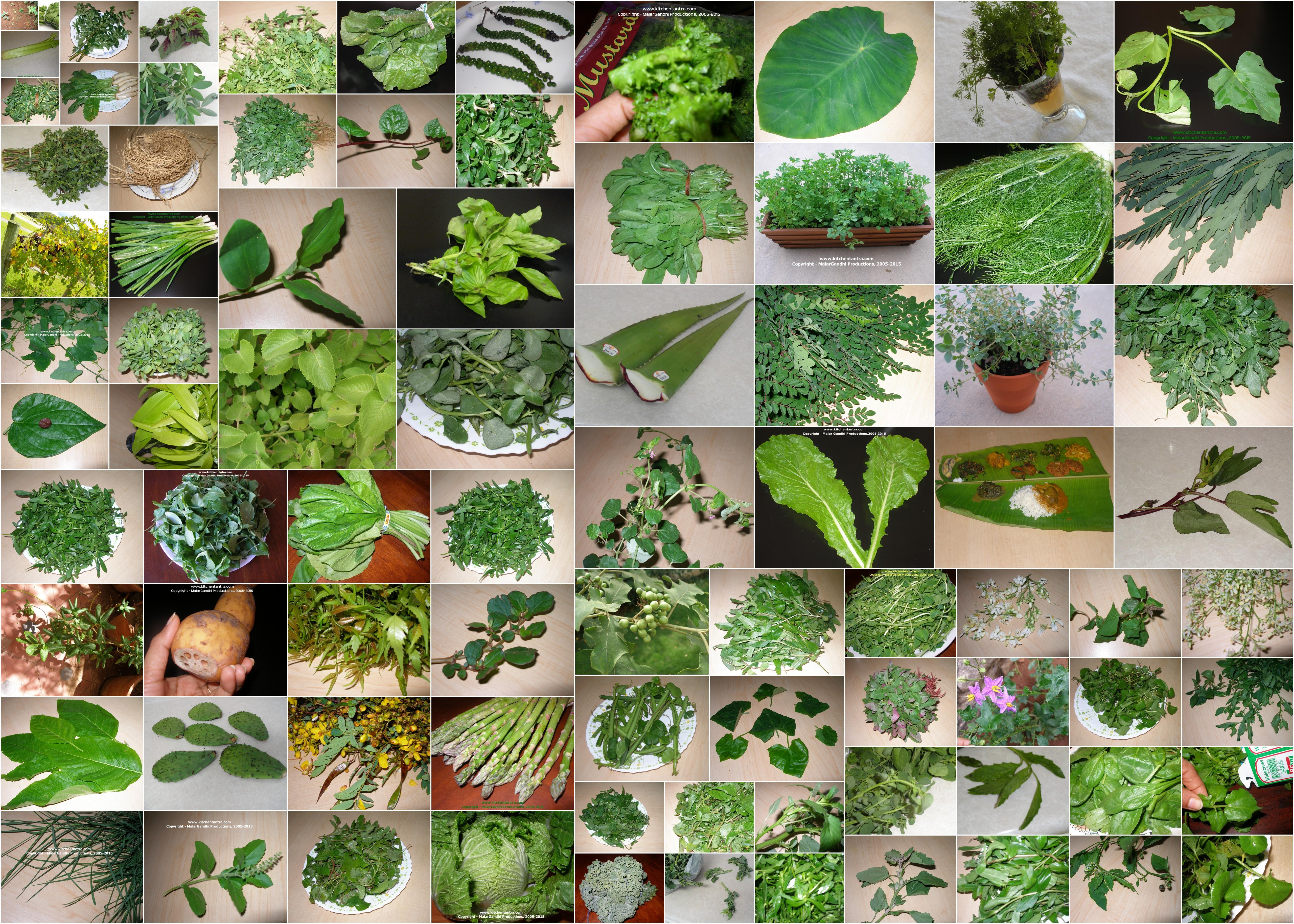 vegetables in thailand